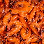 Shrimp Are Keto Diet Friendly