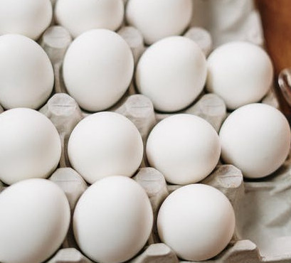 What is a Low Carbohydrate Diet Eggs